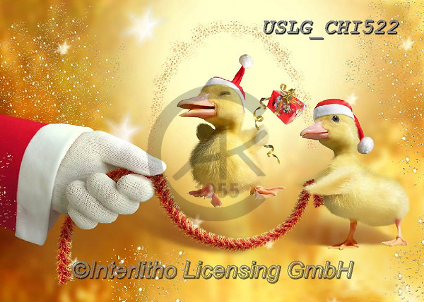 CHIARA,CHRISTMAS ANIMALS, WEIHNACHTEN TIERE, NAVIDAD ANIMALES, paintings+++++,USLGCHI522,#XA# ,funny ,funny