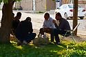 Syria 2019  Rojava,  in the evening, inhabitants of Amuda drinking tea in the street   Syrie 2019 Au Rojava, fin de journée, des habitants d'Amouda buvant du thé dans la rue
