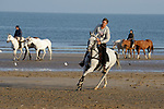 August 15, 2021, Deauville (France) - Horse from the Barrière Deauville Polo Cup training at the beach in Deauville. [Copyright (c) Sandra Scherning/Eclipse Sportswire)]