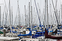 Sailboat masts against an overcast winter sky at San Francisco's South Beach Harbor.