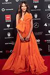 MADRID, SPAIN - JANUARY 16: Actress Antonia San Juan attends Feroz awards 2020 red carpet at Teatro Auditorio Ciudad de Alcobendas on January 16, 2020 in Madrid, Spain.<br /> (David Jar / Alterphotos)