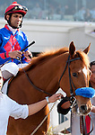March 2010: Mister Marti Gras and Shaun Bridgmohan before the Louisiana Derby at the Fair Grounds in New Orleans, La.