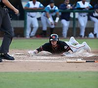 Bryce Johnson - 2019 San Jose Giants (Bill Mitchell)