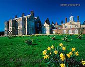 Tom Mackie, FLOWERS, photos, Felbrigg Hall in Spring, Norfolk, England, GBTM200228-2,#F# Garten, jardín