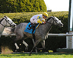 Aoril 12, 2014:   Hard Not to Like and jockey Javier Castellano win the G1 Jenny Wiley S. at Keeneland for owner Hillsbrook Farms and trainerz Michael Mat.Jessica Morgan/ESW/CSM