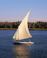The traditional Nile sailing-boat - the felucca - sailing on the Nile near Luxor, Egyp
