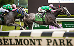 ELMONT, NY - JUNE 11: Pure Sensation, ridden by Jose Ortiz, wins the Jaipur Invitational Stakes on Belmont Stakes Day before the 148th Belmont Stakes on June 11, 2016 in Elmont, New York. (Photo by Scott Serio/Eclipse Sportswire/Getty Images)