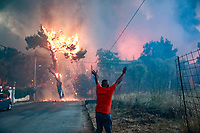 Pictured: A tree is engulfed in flames in Varibobi, Athens, Greece. Tuesday 03 August 2021<br /> Re: Forest fire in Varibobi, on the outskirts of Athens, Greece.
