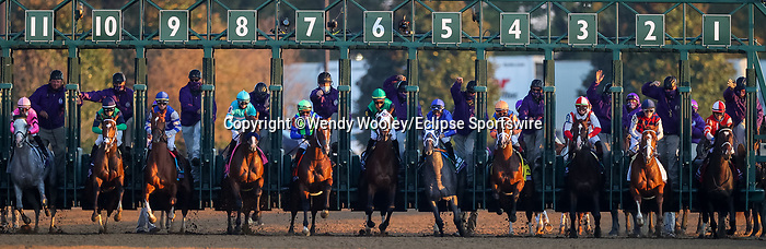November 6, 2020: Essential Quality, ridden by Luis Saez, wins the TVG Juvenile Presented By Thoroughbred Aftercare Alliance on Breeders' Cup Championship Friday at Keeneland on November 6, 2020: in Lexington, Kentucky. Wendy Wooley/Breeders' Cup/Eclipse Sportswire/CSM
