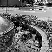 A group of naked boys swim in the South African Breweries (SAB) fountain.