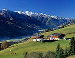 Oesterreich, Salzburger Land, Herbst im Pinzgau: Bauernhof im Salzachtal mit Venediger-Gruppe (Hohe Tauern) | Austria, Salzburger Land, autumn at Pinzgau region: farm at Salzach-Valley with Venediger mountains (Hohe Tauern montain range)