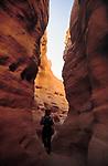 EGY, Aegypten, Sinai: Coloured Canon | EGY, Egypt, Sinai: Coloured Canon