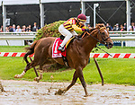 BALTIMORE, MD,  MAY 18: Irish War Cry, #1, ridden by Jose Ortiz, wins the Pimlico Special at Pimlico Racecource on May 18, 2018 in Baltimore, Maryland. (Photo by Sue Kawczynski/Eclipse Sportswire/Getty Images)