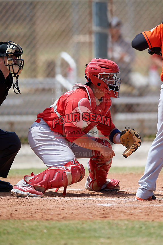St. Louis Cardinals Julio Rodriguez (28) during a Minor League Spring Training game against the Miami Marlins on March 26, 2018 at the Roger Dean Stadium Complex in Jupiter, Florida.  (Mike Janes/Four Seam Images)