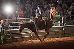 SEBRA - Danville, VA - 8.15.2015 - Broncs