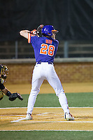 Seth Beer (28) of the Clemson Tigers at bat against the Wake Forest Demon Deacons at David F. Couch Ballpark on March 12, 2016 in Winston-Salem, North Carolina.  The Tigers defeated the Demon Deacons 6-5.  (Brian Westerholt/Four Seam Images)
