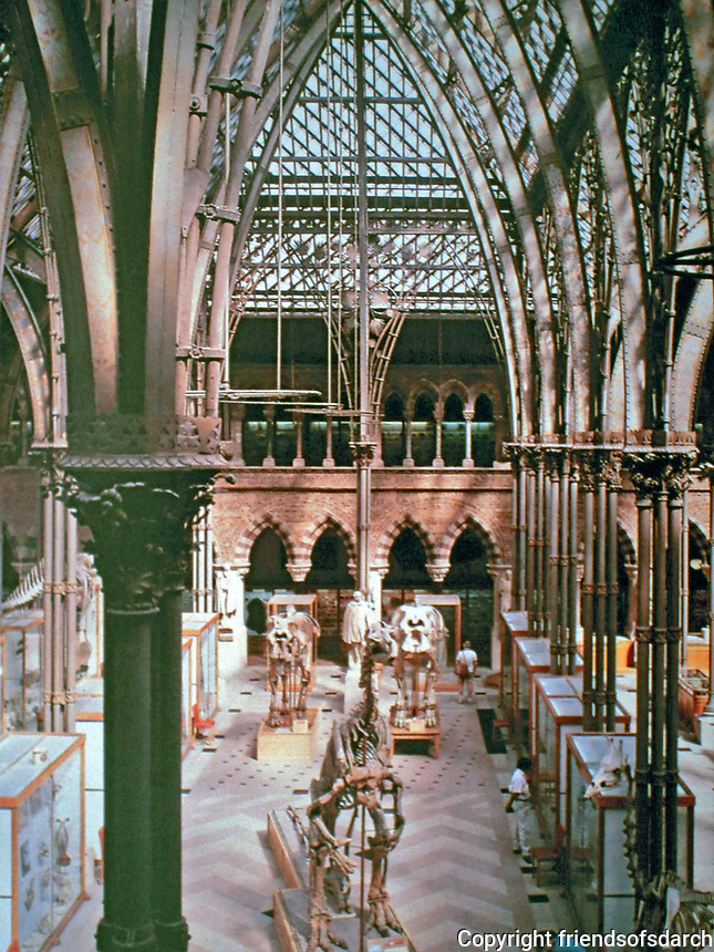Oxford University Museum of Natural History. Cathedral like building with soaring stained glass ceilings was designed by Irish architects Thomas Newenham Deane and Benjamin Woodward. 1855-1860