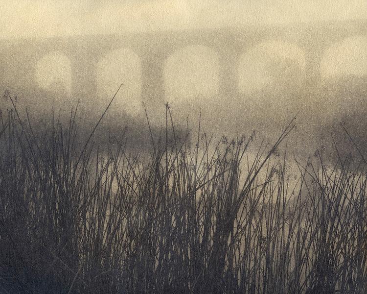 Viaduct in fog<br /> Malmsbury Botanic Gardens