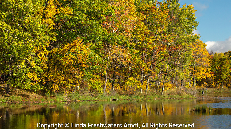 Autumn colors on a wilderness lake in northern Wisconsin.