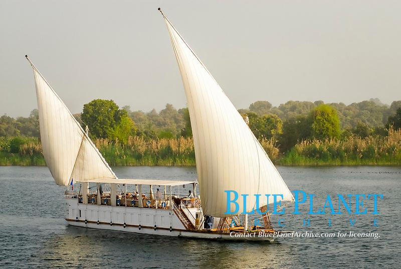 felucca boat sailing the Nile river, white sails, tourism, tourist transportation, Egypt, North Africa