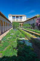 Court of the Main Canal in the Moorish Generalife's Lower Gardens, Alhambra. Granada, Andalusia, Spain.
