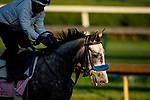 April 26, 2021: Crazy Beautiful gallops in preparation for the Kentucky Oaks at Churchill Downs in Louisville, Kentucky on April 26, 2021. EversEclipse Sportswire/CSM