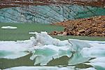 Canada: Mount Edith Cavell Glacier
