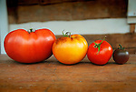 Heirloom Tomatoes .Pink Ponderosa, Purple Smudge, German Lunch Box, Black Cherry