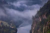 Spajici Lake<br /> Tara National Park<br /> Serbia
