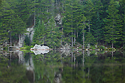 Reflection of forest in Saco Lake in the White Mountains of New Hampshire.
