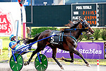 "August 8, 2020: Ramona Hill won the 95th Hambletonian as the peoples choice for the connections of Tony Alagana and Crawford farms.  Aussie Andrew McCarthy was in the ""sulkie"" at the Medowlands in East Rutherford, New Jersey. Heary/Eclipse Spotrswire/CSM"