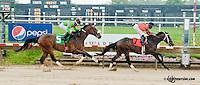 Muggsy winning at Delaware Park on 6/24/13