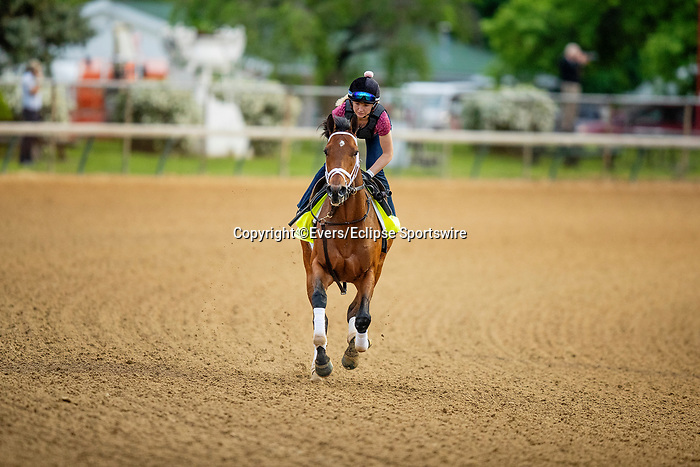 April 28, 2021: Sainthood gallops in preparation for the Kentucky Derby at Churchill Downs in Louisville, Kentucky on April 28, 2021. EversEclipse Sportswire/CSM