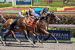 HALLANDALE BEACH, FL - FEB 17:Chella #7 trained by owner Elliot Sullivan with Samy Camacho in the irons wins the $50,000 Lady Bird Claiming Stakes at Gulfstream Park on February 17, 2018 in Hallandale Beach, Florida. (Photo by Bob Aaron/Eclipse Sportswire/Getty Images)