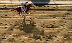 May 13, 2021: Ram exercises for the Preakness Stakes at Pimlico Race Course in Baltimore, Maryland. Scott Serio/Eclipse Sportswire/CSM