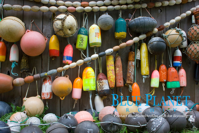 A diverse assortment of colorful floating crab pot markers hang on display. Pacific Ocean, Washington.