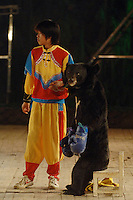 Asian brown bears, Hui Hui, wearing red gloves and Bei Bei box in a bizarre spectacle held twice daily at a Chinese wildlife park that describes itself as a bear sanctuary in Guanxi Province, China...SINOPIX PHOTO.