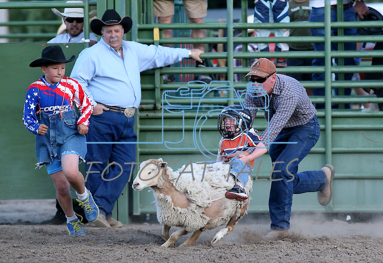 A Carson City rider competes in the Mutton Bustin' portion of the Smackdown Tour Bull Riding event at Fuji Park in Carson City, Nev., on Saturday, June 7, 2014.<br /> Photo by Cathleen Allison