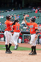 Sam Houston State Bearkats outfielder Luke Plucheck #26 is greeted at home by teammate Shea Pierce #2 after scoring during the NCAA baseball game against the Texas Tech Red Raiders on March 1, 2014 during the Houston College Classic at Minute Maid Park in Houston, Texas. The Bearkats defeated the Red Raiders 10-6. (Andrew Woolley/Four Seam Images)