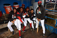 Batavia Muckdogs Osman Gutierrez, Marcos Rivera, Samuel Castro, Manuel Rodriguez, Ricardo Cespedes, and Jeremy Ovalle in the dugout before a game against the Auburn Doubledays on September 6, 2017 at Dwyer Stadium in Batavia, New York.  Auburn defeated Batavia 6-3.  (Mike Janes/Four Seam Images)