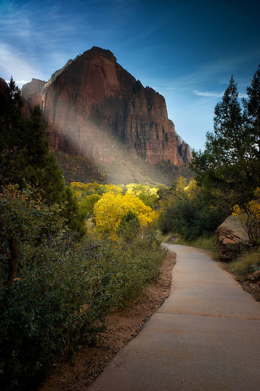 Path in Zion National Park, Utah