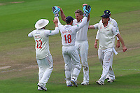 Timm van der Gugten (C) celebrates taking the wicket of James Foster during Glamorgan CCC vs Essex CCC, Specsavers County Championship Division 2 Cricket at the SSE SWALEC Stadium on 23rd May 2016