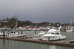 Jessie's Ilwaco Fish Co. buildings shine through rain over Ilwaco Harbor at the mouth of the Columbia River, Washington.