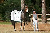 Champion jumper Mixed Up, seen here as a youthful 5-year-old back in 2004, heads a field of five in the NSA opening feature, the Imperial Cup at Aiken on Saturday.