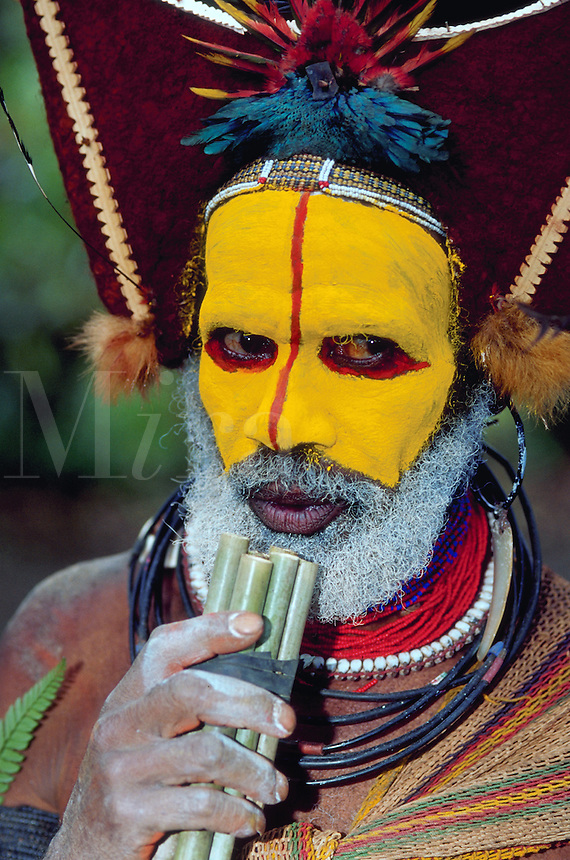 Portrait of a Huli Wigman-warrior; he has an ornate headdress, face paint and plays a bamboo pipe instrument. Papua New Guinea.