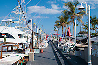 Whale Harbor Marina On Islamorada island Florida