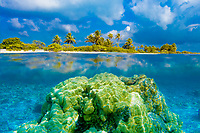 Over and under sea surface with a coconut palm tree motu and underwater coral reefs, in turquoise Rangiroa lagoon, Tuamotus, French Polynesia