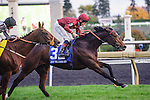 Just The Judge (IRE)(3) with Jockey Jamie P. Spencer aboard runs to victory at the E. P. Taylor Stakes at Woodbine Race Course in Toronto, Canada on October 19, 2014.