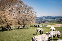 peloton up the Côte de La Roche-en-Ardennes<br /> <br /> 107th Liège-Bastogne-Liège 2021 (1.UWT)<br /> 1 day race from Liège to Liège (259km)<br /> <br /> ©kramon