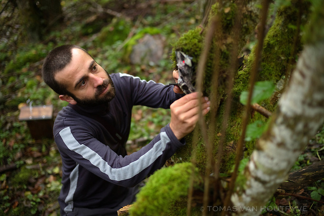 Albert Burgas Riera, a scientist from Barcelona, checks a camera trap in Melles valley of France, in the French Pyrenees on Sept. 30, 2014. Burgas Riera has partnered with the American NGO Earth Watch and the local NGO Pays de l'Ours for a climate change study in the Pyrenees.